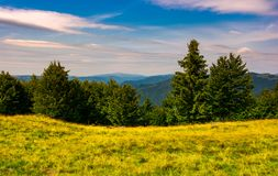 Forest on a grassy meadow in mountains. Beautiful summer landscape with Krasna mountain in the far distance under the blue sky with some clouds Royalty Free Stock Photo