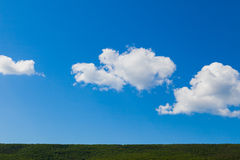 Forest green horizon and blue sky Royalty Free Stock Photo