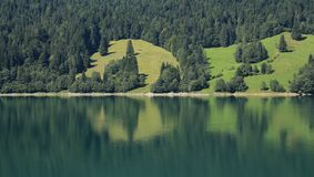 Forest and green meadows mirroring in lake Waegitalersee Royalty Free Stock Images