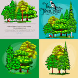 Forest green trees on the grass bush in summer landscape background. Nature landscape design elements  with Royalty Free Stock Photo