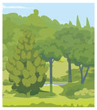 Forest. green Trees. Illustration of forest. Green different trees. background Royalty Free Stock Images