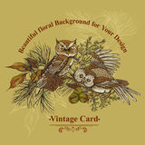 Forest greeting card with owls, spruce and fir Royalty Free Stock Photo