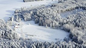The forest ground covered with white snow in Estonia. And the trees filled with snow as seen on an aerial view stock video
