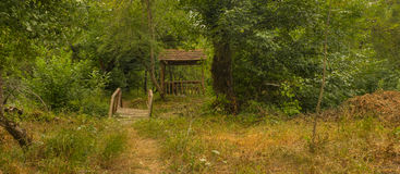 Forest in Guba Azerbaijan royalty free stock photos
