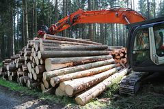 Forest_harvesting Fotos de Stock Royalty Free