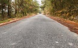 Forest Highway fotos de stock