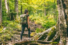Free Forest Hike Trail Hiker Woman Walking In Autumn Fall Nature Background In Fall Season. Hiking Active People Lifestyle Stock Image - 193896791