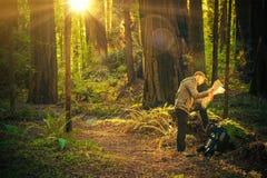 Forest Hiking Man con el mapa Imagenes de archivo
