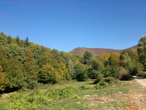 Forest hill. Photo forested hills early autumn Stock Photos