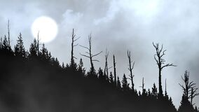 Forest Hill Silhouette with Hazy Sun and Clouds 4K Loop