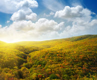 Forest Hills Stockfoto