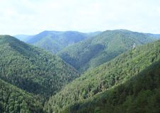 Forest Hills i slovakiskt paradis Arkivbilder