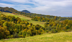 Forest on hills in mountainous countryside valley Stock Image