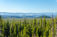 Forest and Hills Stock Photography