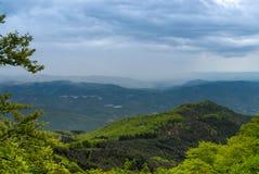 Forest Hills verde cerca de Barcelona fotografía de archivo
