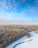 Forest in hoarfrost, top view Royalty Free Stock Images