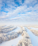 Forest in hoarfrost, top view Stock Photos