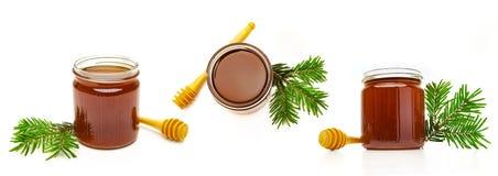 Forest Honeys in Glas royalty-vrije stock fotografie