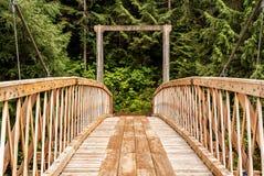 Forest Horse Bridge Over River Immagine Stock