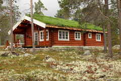 Forest house. Forest chalet with grass roof Stock Photography