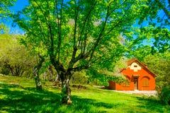 Forest House In La St Baume lizenzfreie stockfotos