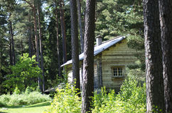Forest house. A little house found in the wild Scandinavian forest during a sunny summer day royalty free stock image