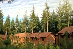 Forest Houses Royalty Free Stock Photos