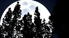 Forest and a Huge Blue Moon stock footage