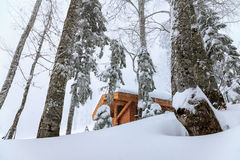 A forest hut in the mountains at winter snowstorm foggy scenery Stock Photos