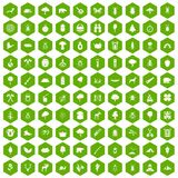 100 forest icons hexagon green. 100 forest icons set in green hexagon isolated vector illustration Royalty Free Stock Photography