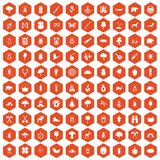 100 forest icons hexagon orange. 100 forest icons set in orange hexagon isolated vector illustration Stock Photos