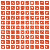 100 forest icons set grunge orange. 100 forest icons set in grunge style orange color isolated on white background vector illustration Stock Photography