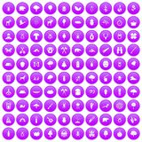 100 forest icons set purple. 100 forest icons set in purple circle isolated on white vector illustration Stock Photo