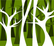 Forest illustration Stock Images