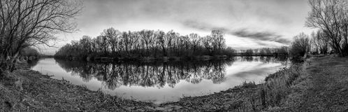 Forest island reflection - panoramic landscape. Forest island reflection on water- panoramic landscape black and white Royalty Free Stock Images