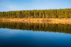 The forest and its mirror image in a river. The forest and its mirror image in the river Neman Grodno region, Belarus Royalty Free Stock Photos