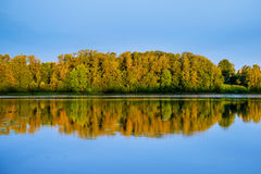 Forest and its reflection in water of river Stock Image