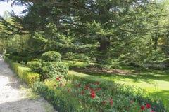 Forest, Jardines de la Granja de San Ildefonso, monuments in Spa Royalty Free Stock Image