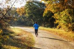 Forest Jogging imagen de archivo libre de regalías