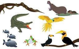 Forest Jungle et faune d'animaux de rivière illustration de vecteur