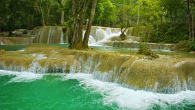 Forest Kouang Si Waterfall, Laos Royalty Free Stock Photo