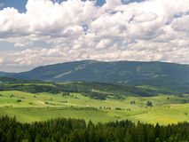 Forest and Kubinska Hola, Slovakia Royalty Free Stock Images