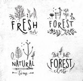 Forest labels Royalty Free Stock Photo