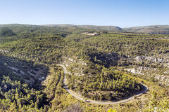 Forest of Lagrasse Royalty Free Stock Photos