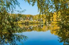Forest Lake Fotografia Stock Libera da Diritti