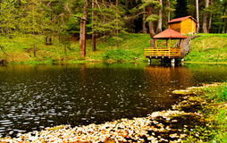 Forest lake. Bulgarian nature landscape with forest lake Royalty Free Stock Photos