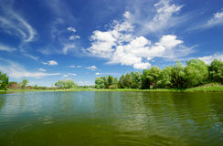 Forest lake Stock Photos