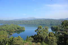 Forest lake. Drive into the forest near Valparai in India Royalty Free Stock Image