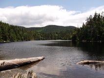 Forest Lake 2 Royalty-vrije Stock Afbeeldingen
