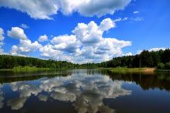 Forest Lake Stock Afbeeldingen